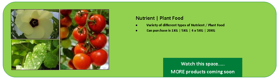 Nutrient | Plant Food